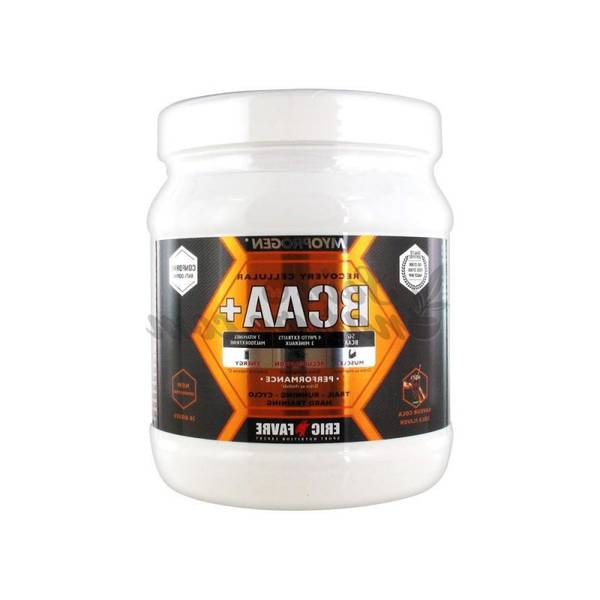 Bcaa glutamine : economiser - enfin disponible - test